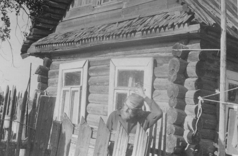 В деревне Авдеево, Новгородская область, 1979 год