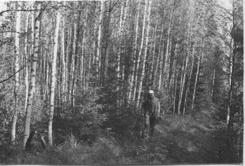 Е. Г. Михнов-Войтенко, Новгородская область, 1979 год.